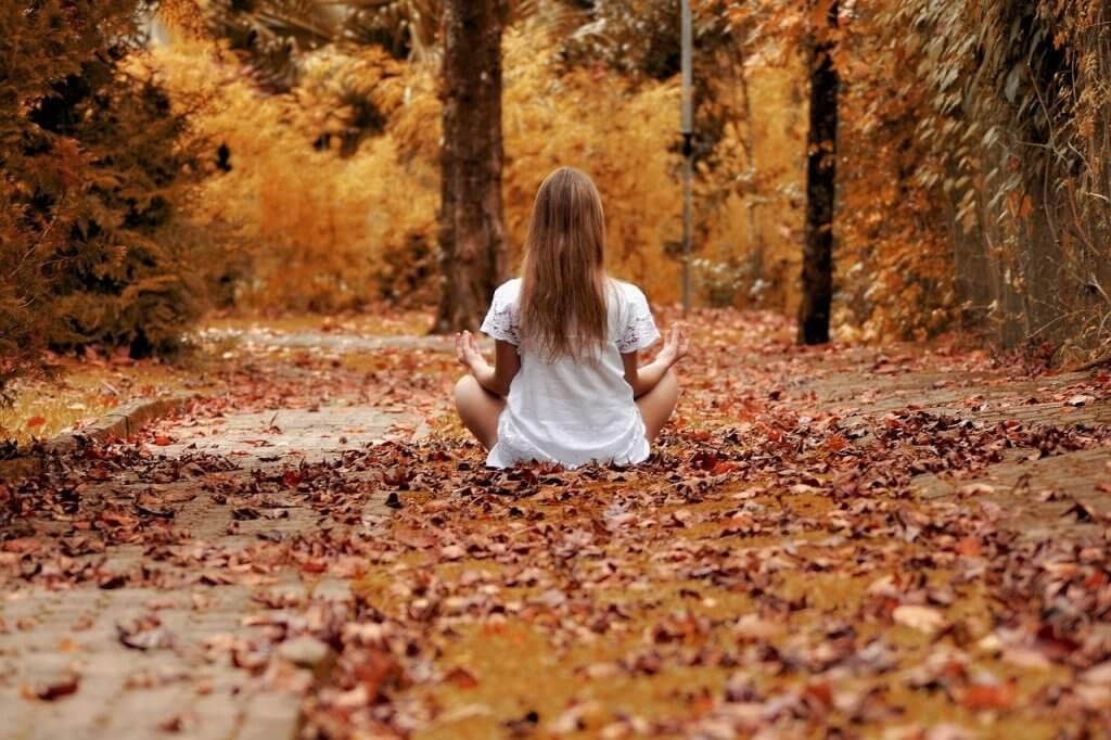 Girl Forest Zen Meditation  - ractapopulous / Pixabay