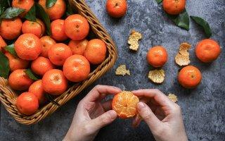 Winter Fruit Peel An Orange  - seal1837 / Pixabay